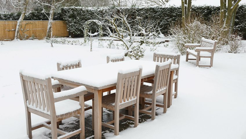 Tips For Gardening In The Winter