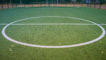 Looking After Your Artificial Grass In The Autumn